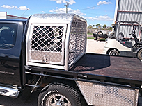 Dog cage on ute