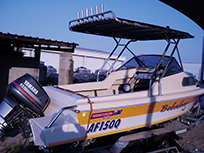 Boat with fishing poles